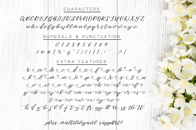 Sweet Jasmine Script example image 3