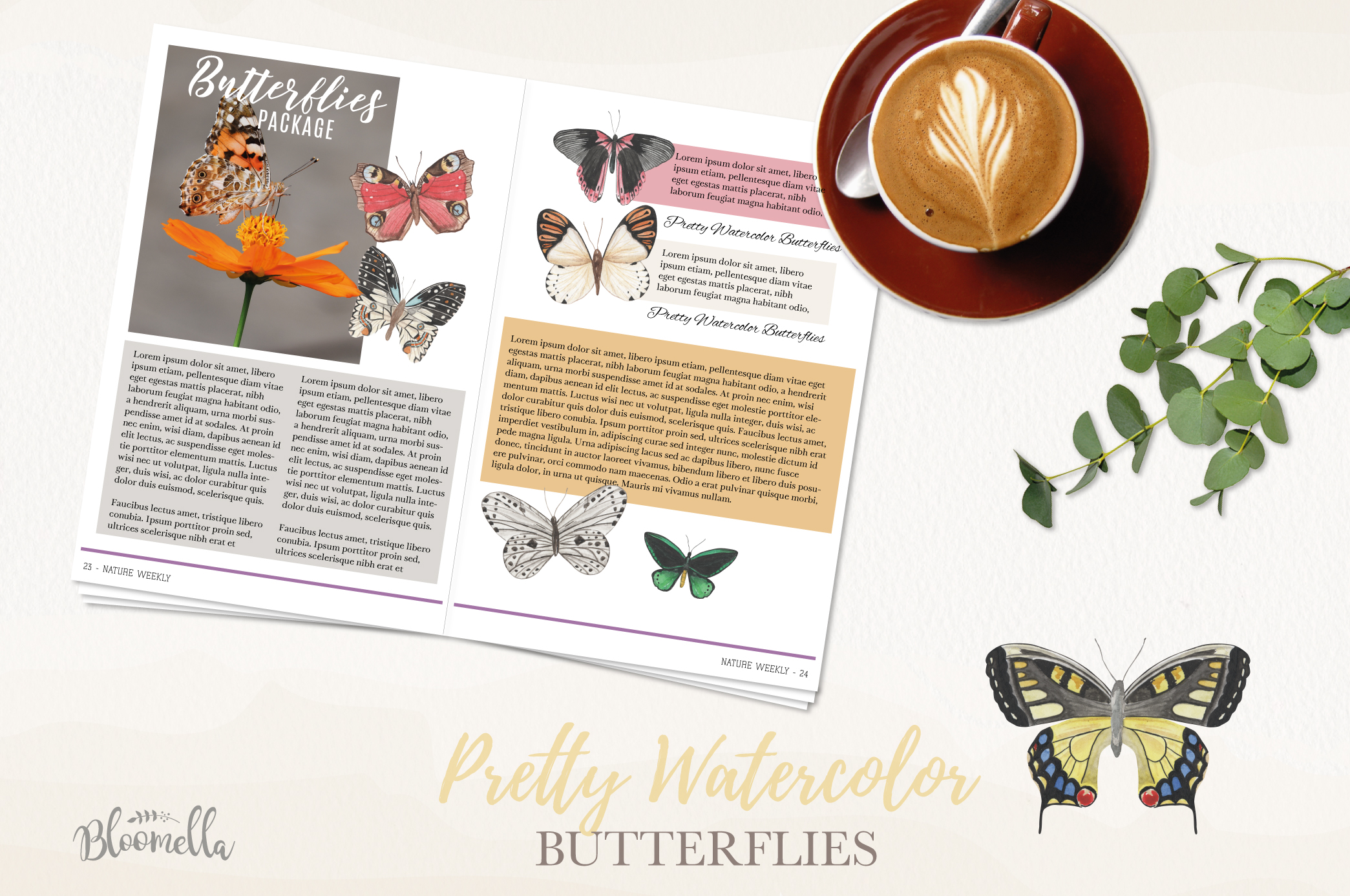 Butterfly Collection 12 Watercolor Clipart Elements Insect example image 2