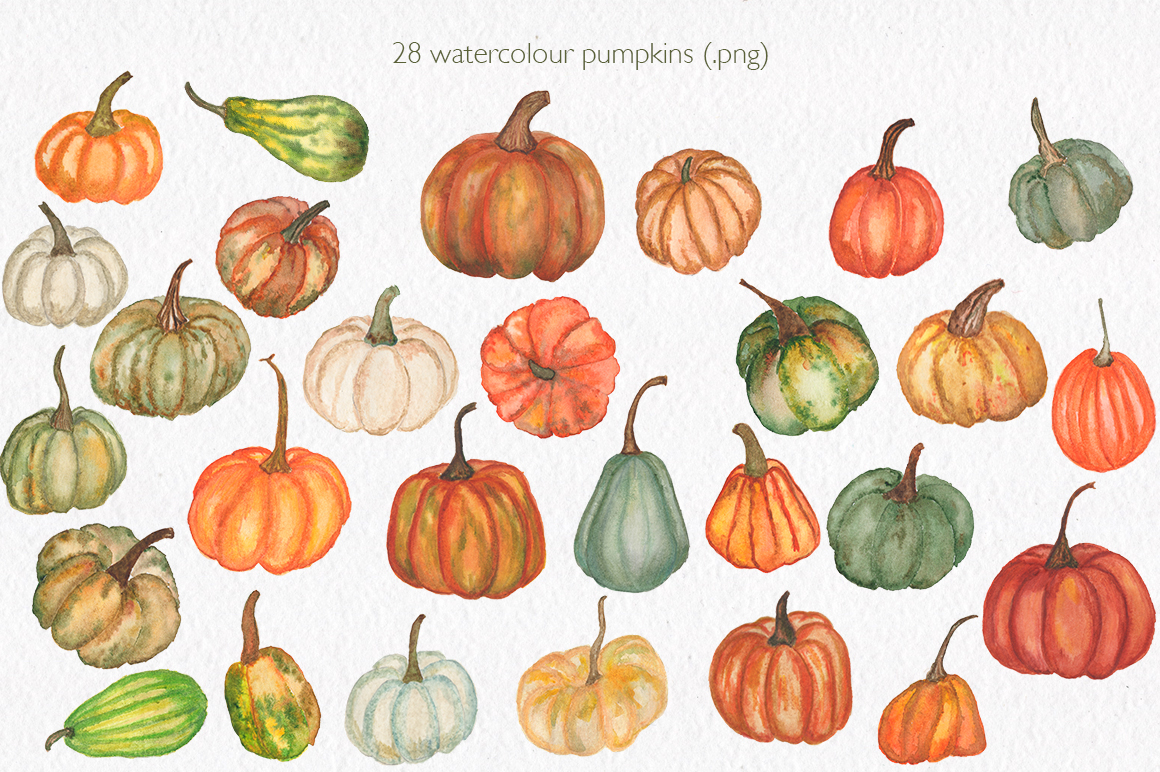 Pumpkin collection. Watercolor clipart. example image 2