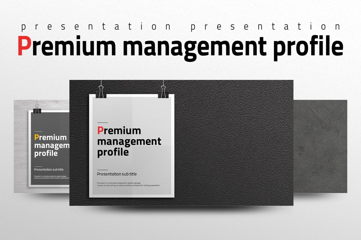 Premium Powerpoint Template example image 1
