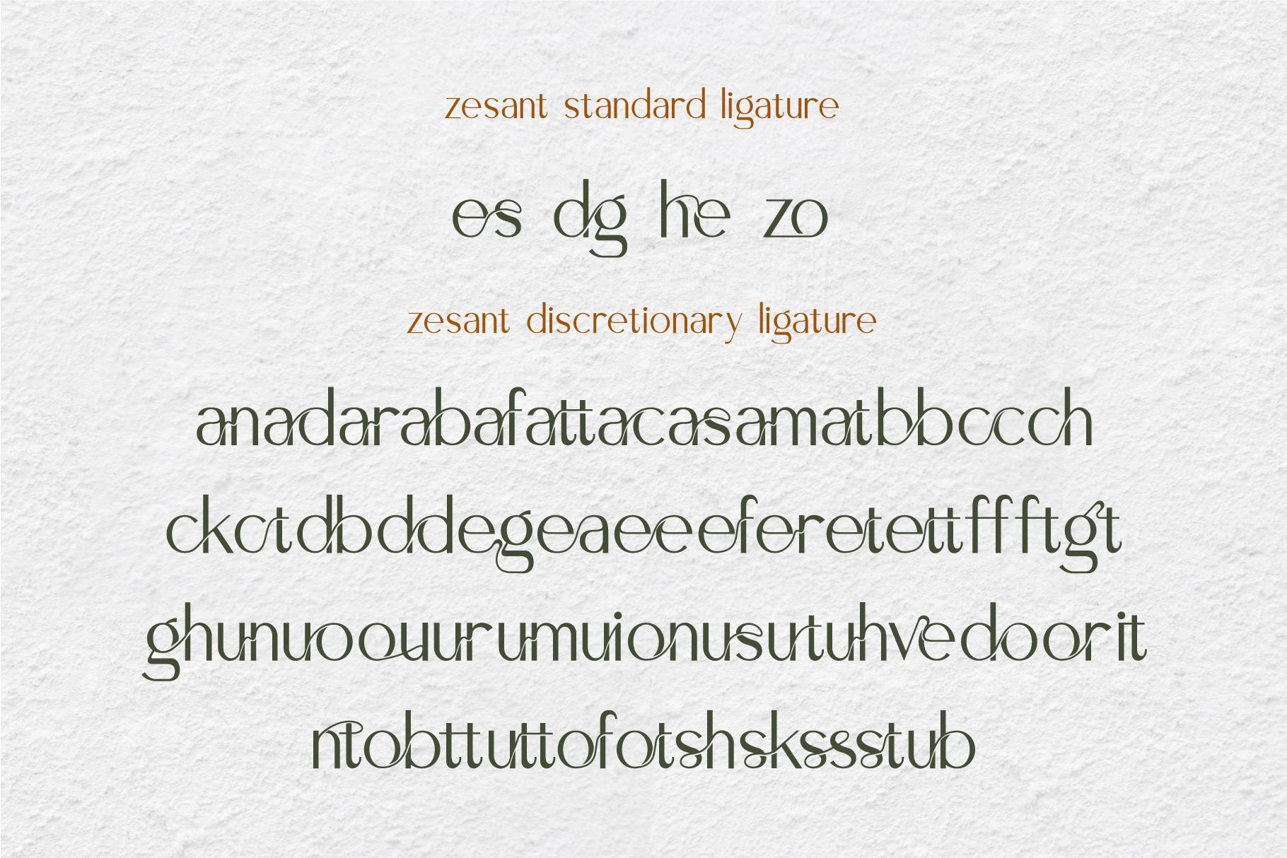 Zesant example image 7