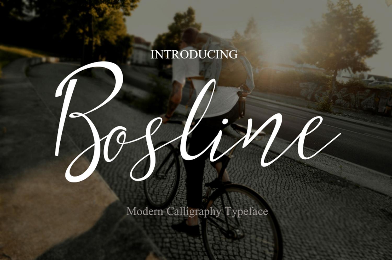 Bosline example image 1