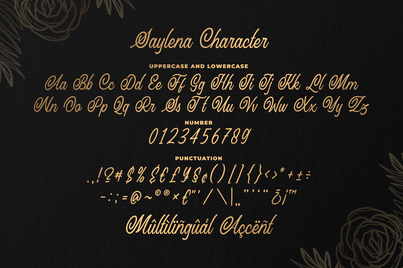 Saylena - Luxury Script Font example image 6