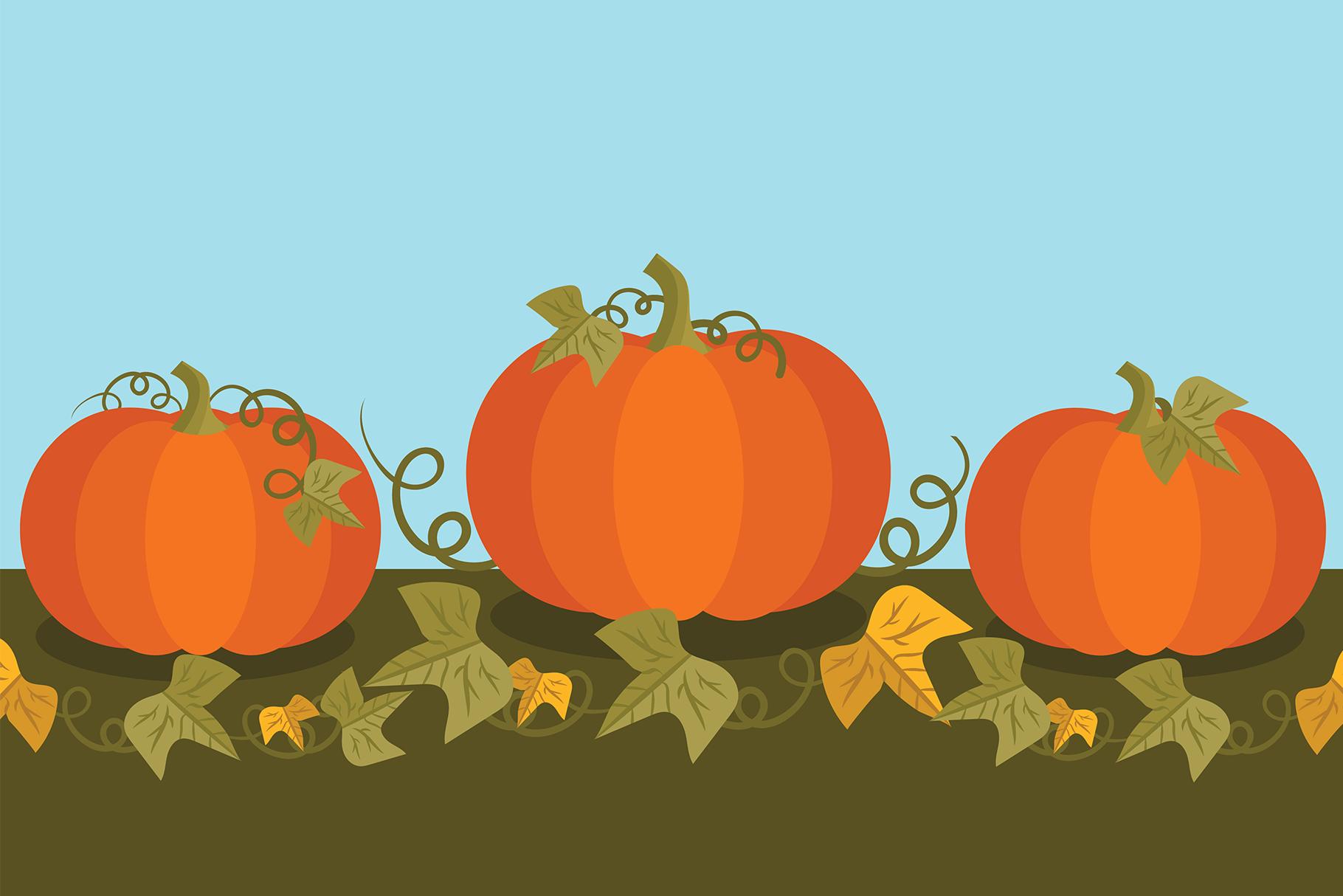 Fall Pumpkins Clip Art Set example image 7