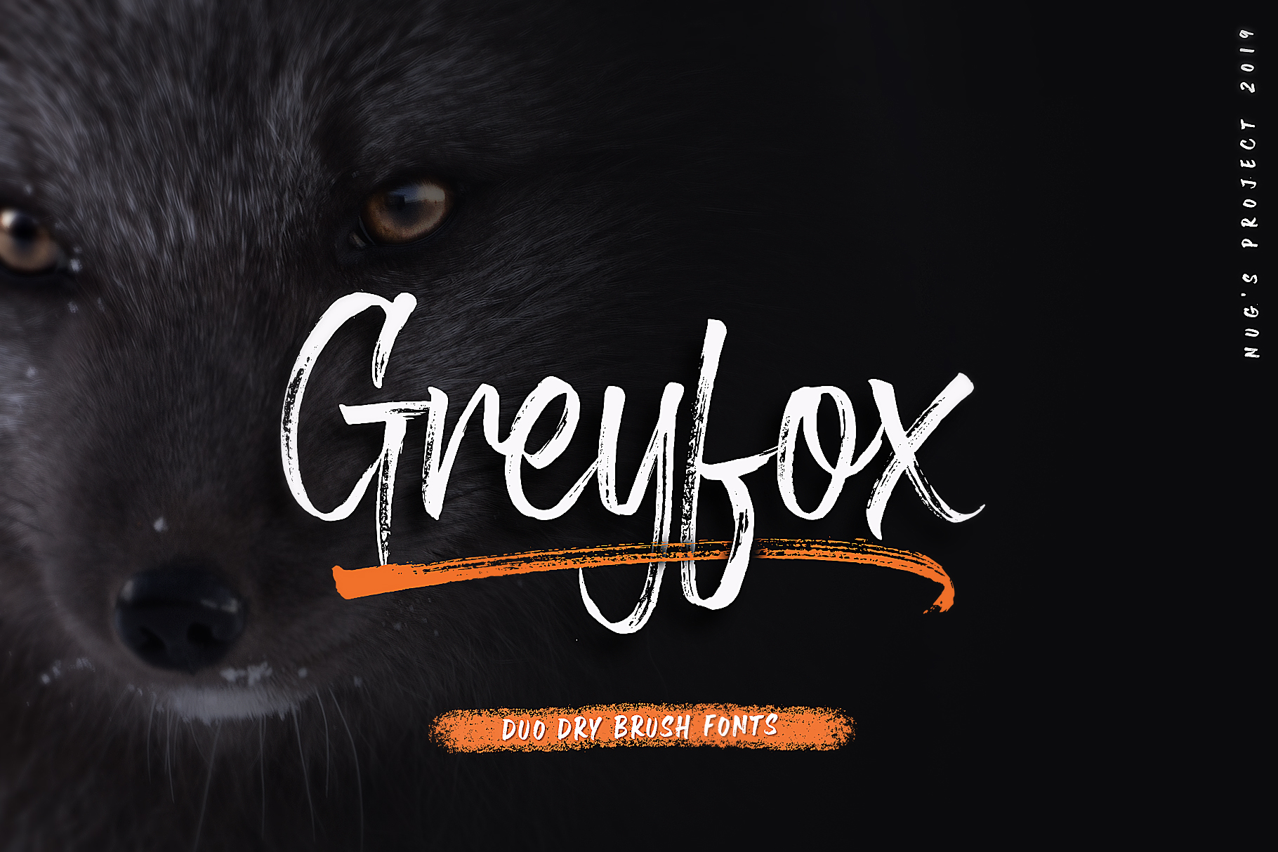Greyfox Duo Dry Brush example image 1