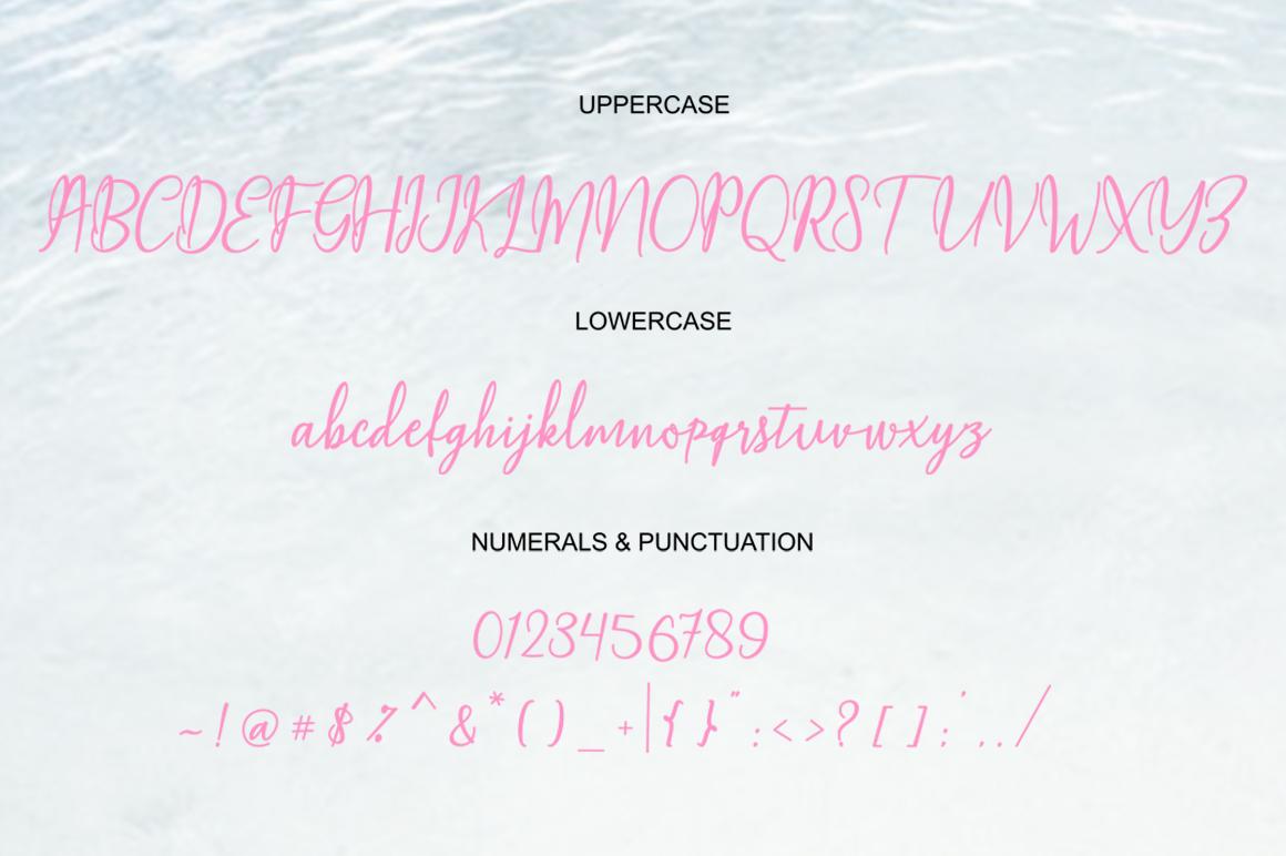 Magella Script example image 2