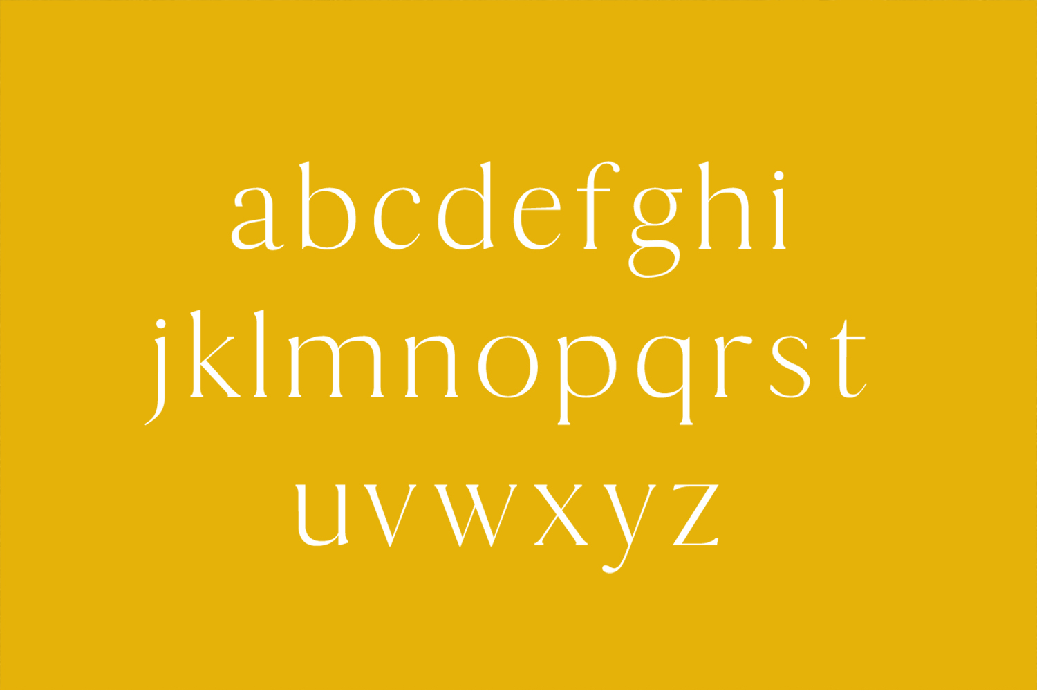 Thomas Mag Serif 9 Fonts Family Pack example image 3