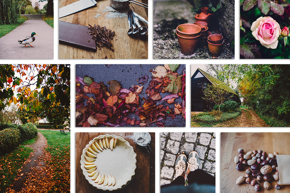 Fall-Inspired Photos & Quote Bundle example image 5