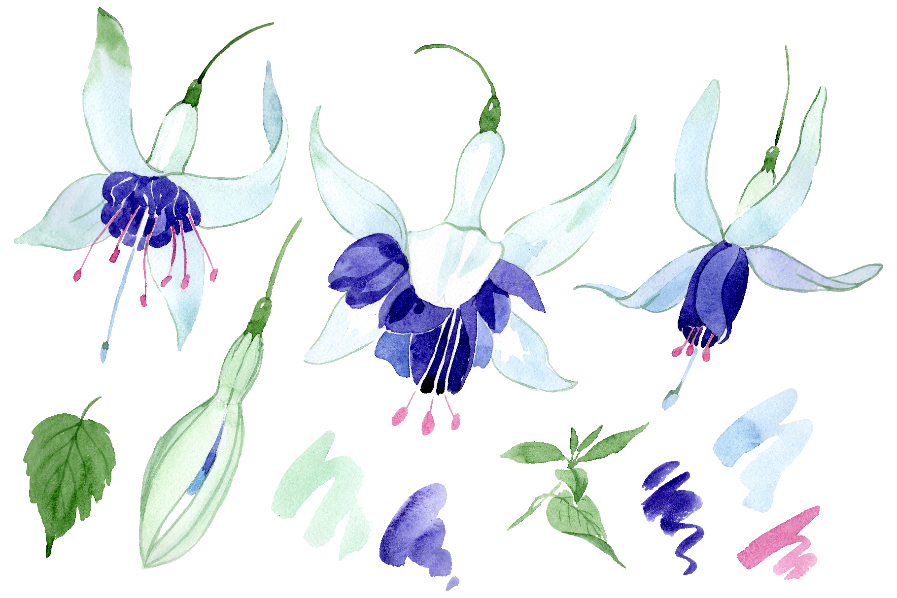 Fuchsia Watercolor png example image 1