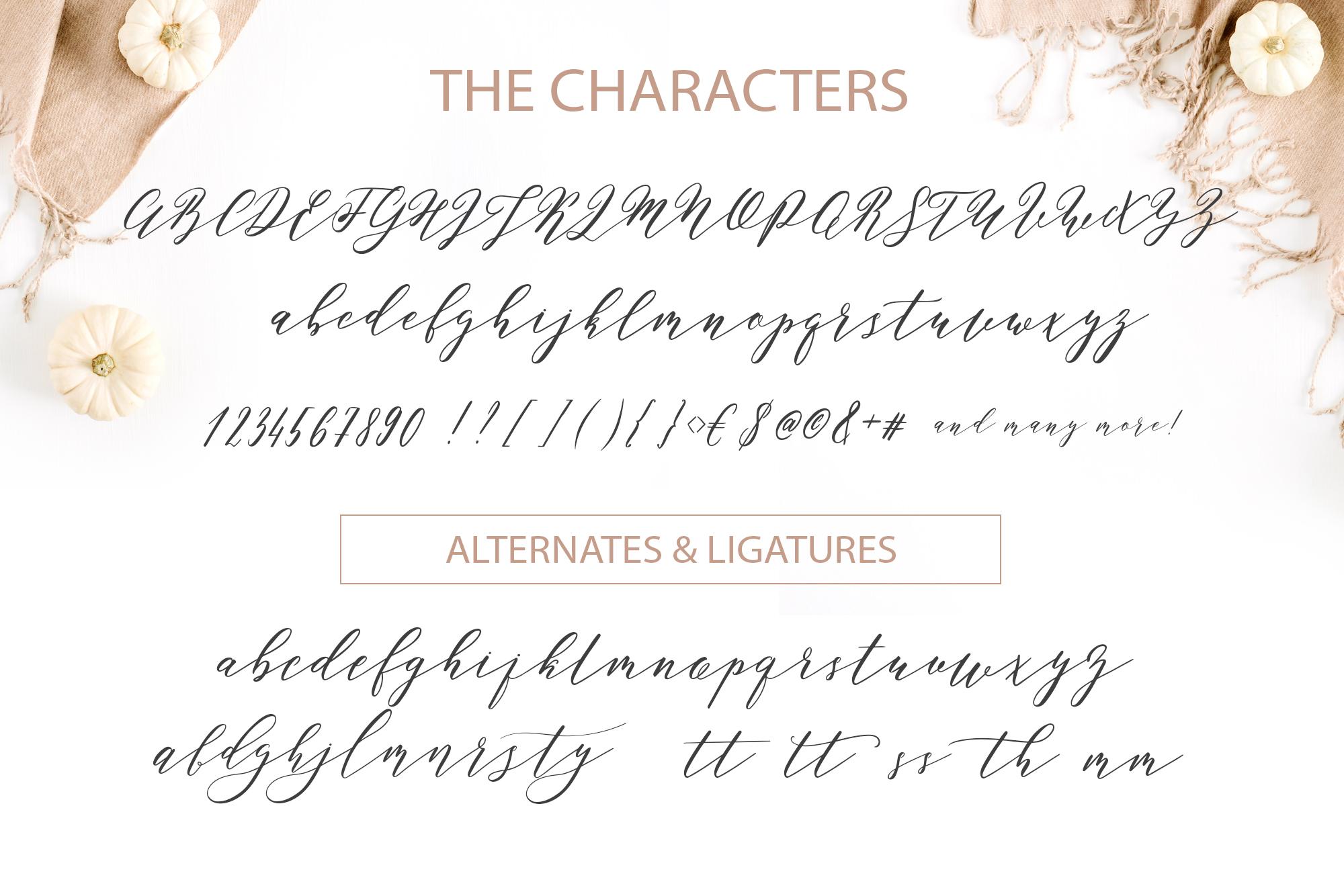 Perfect Charm - Elegant Font Script example image 8