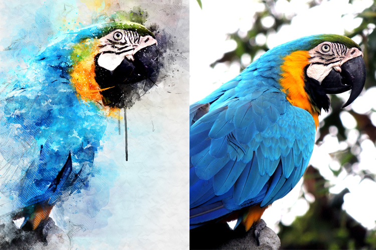 Watercolor Mixed Art Photoshop Action example image 9