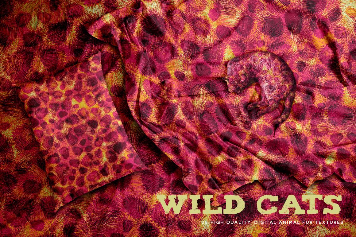 Wild Cats example image 6