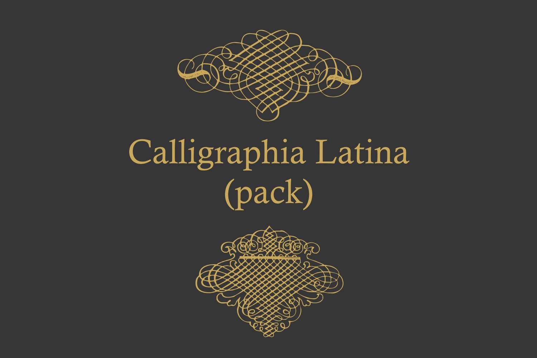 Calligraphia Latina Pack example image 2