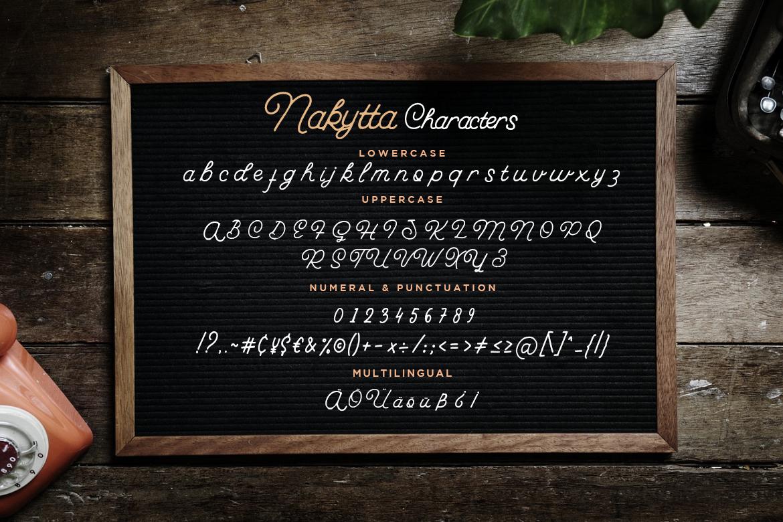 Nakytta Monoline Script example image 7