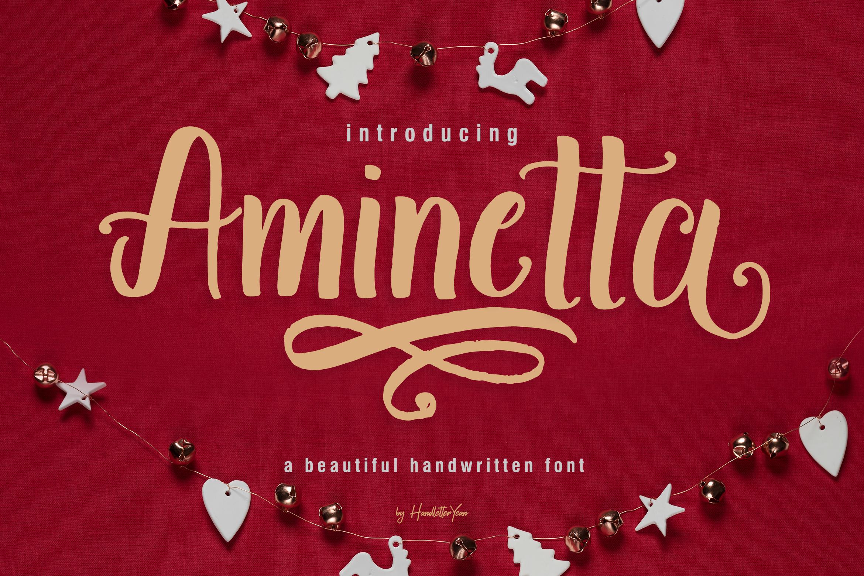 Aminetta example image 1