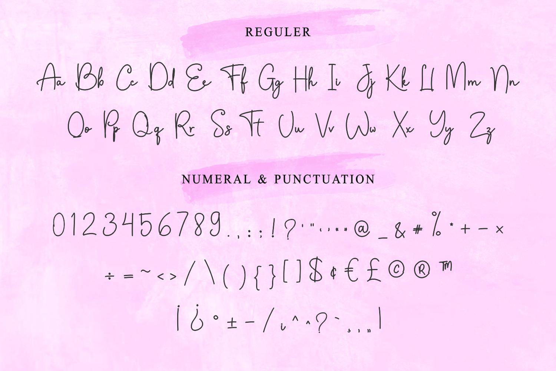 Fellicya Stylish Font example image 11