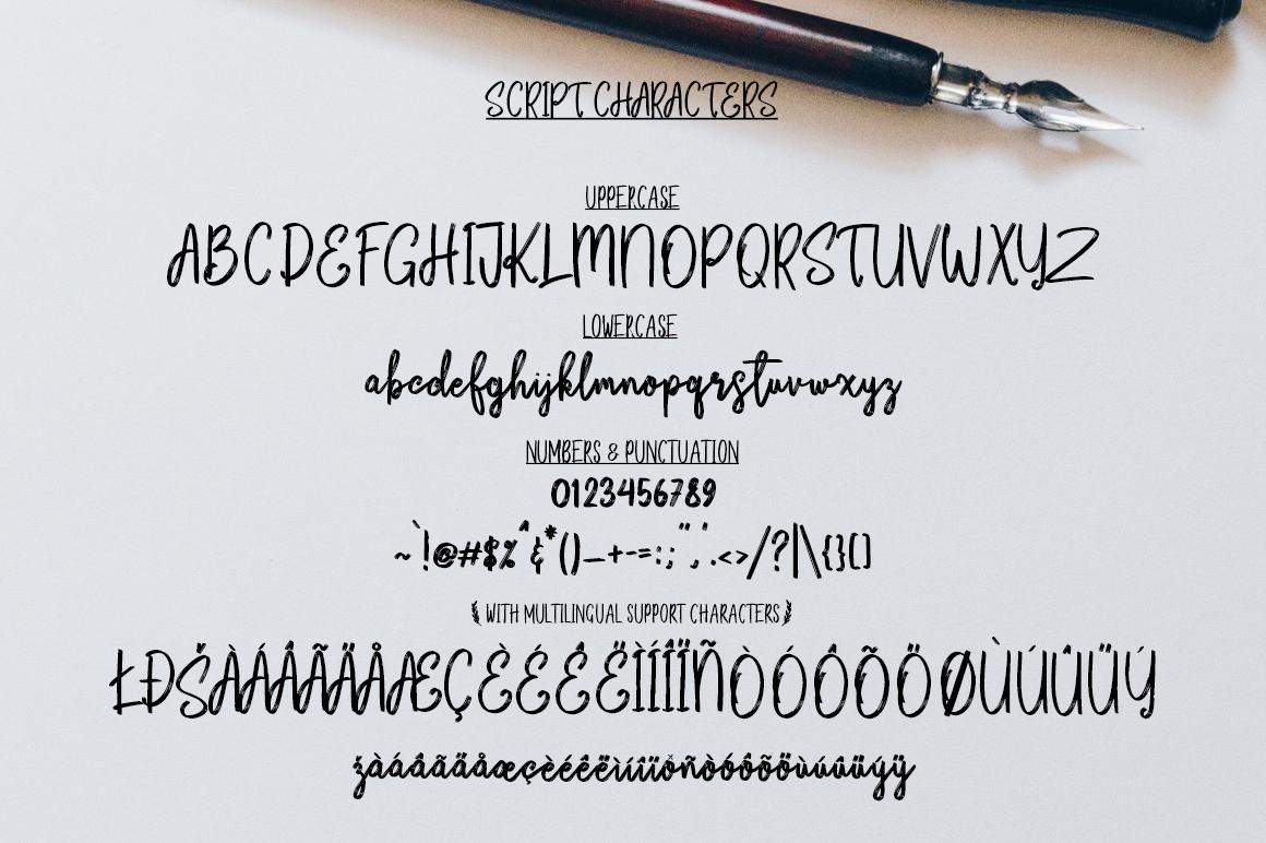 Bikarosta Font Duo with Extras example image 16