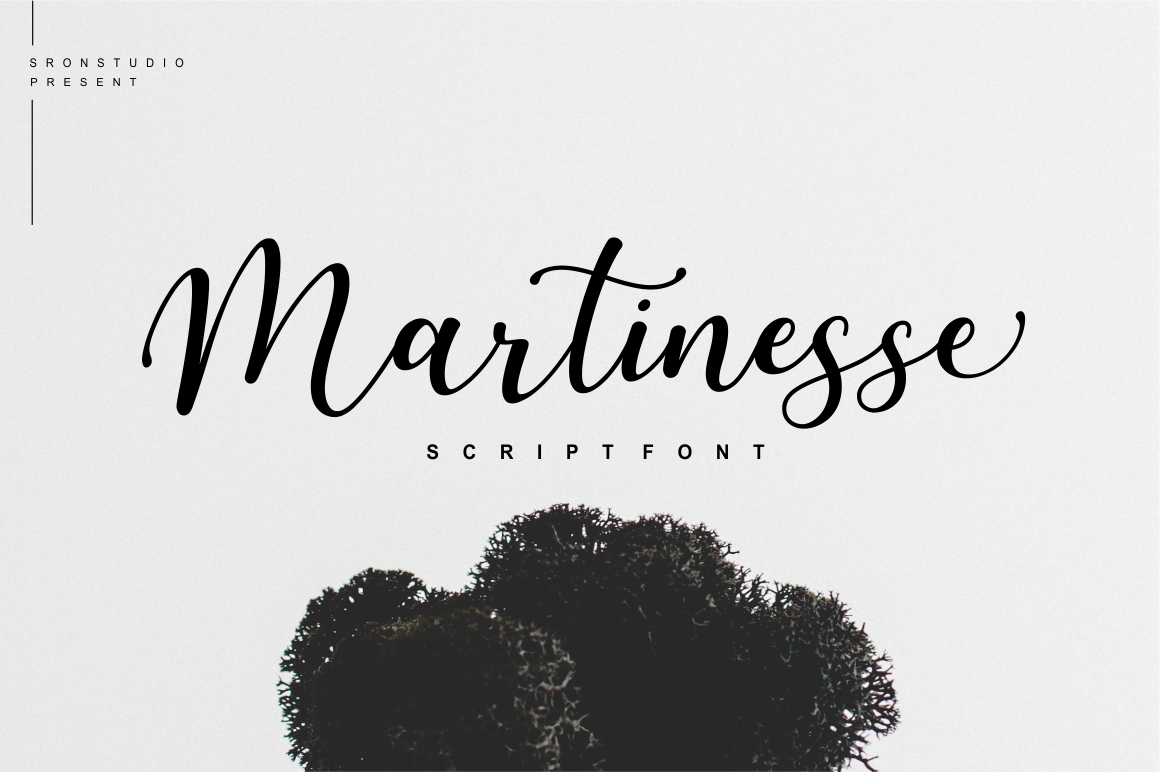 Martinesse - Script Font example image 1