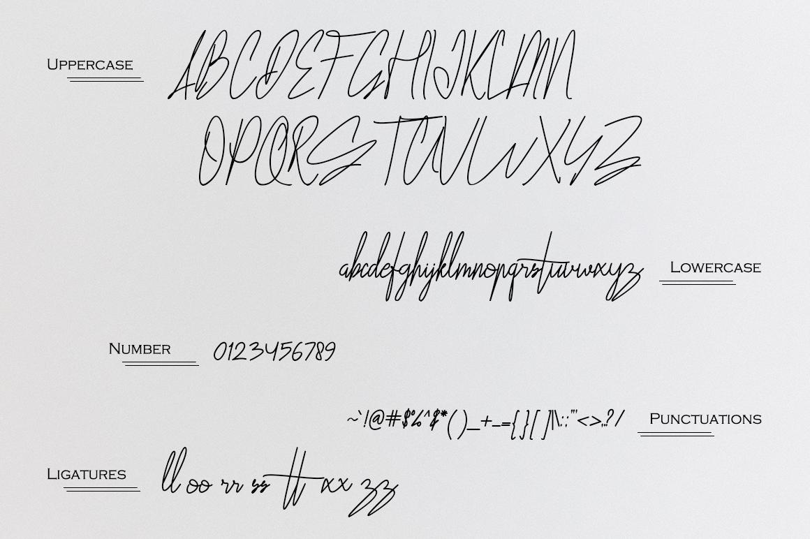 Fiorenza Signature Font example image 10