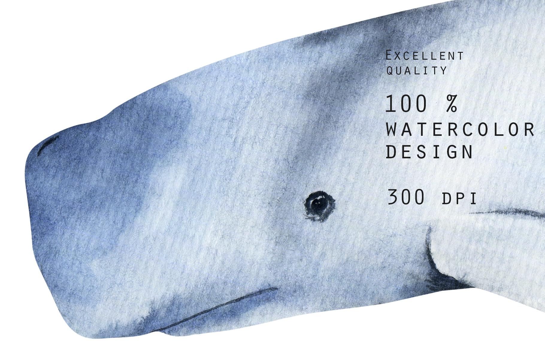 Sea life. Watercolor clip art. example image 13