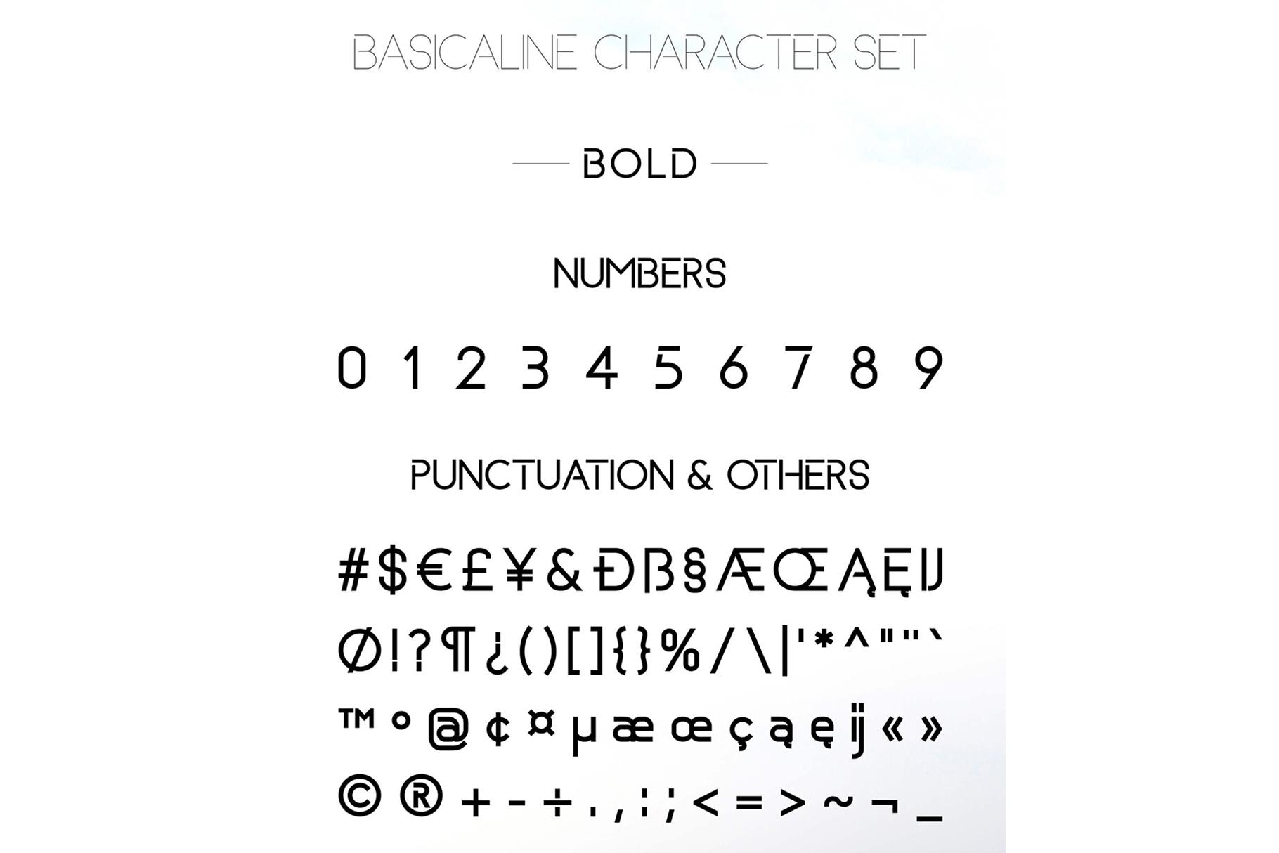 Basicaline Font Family - Sans Serif example image 14