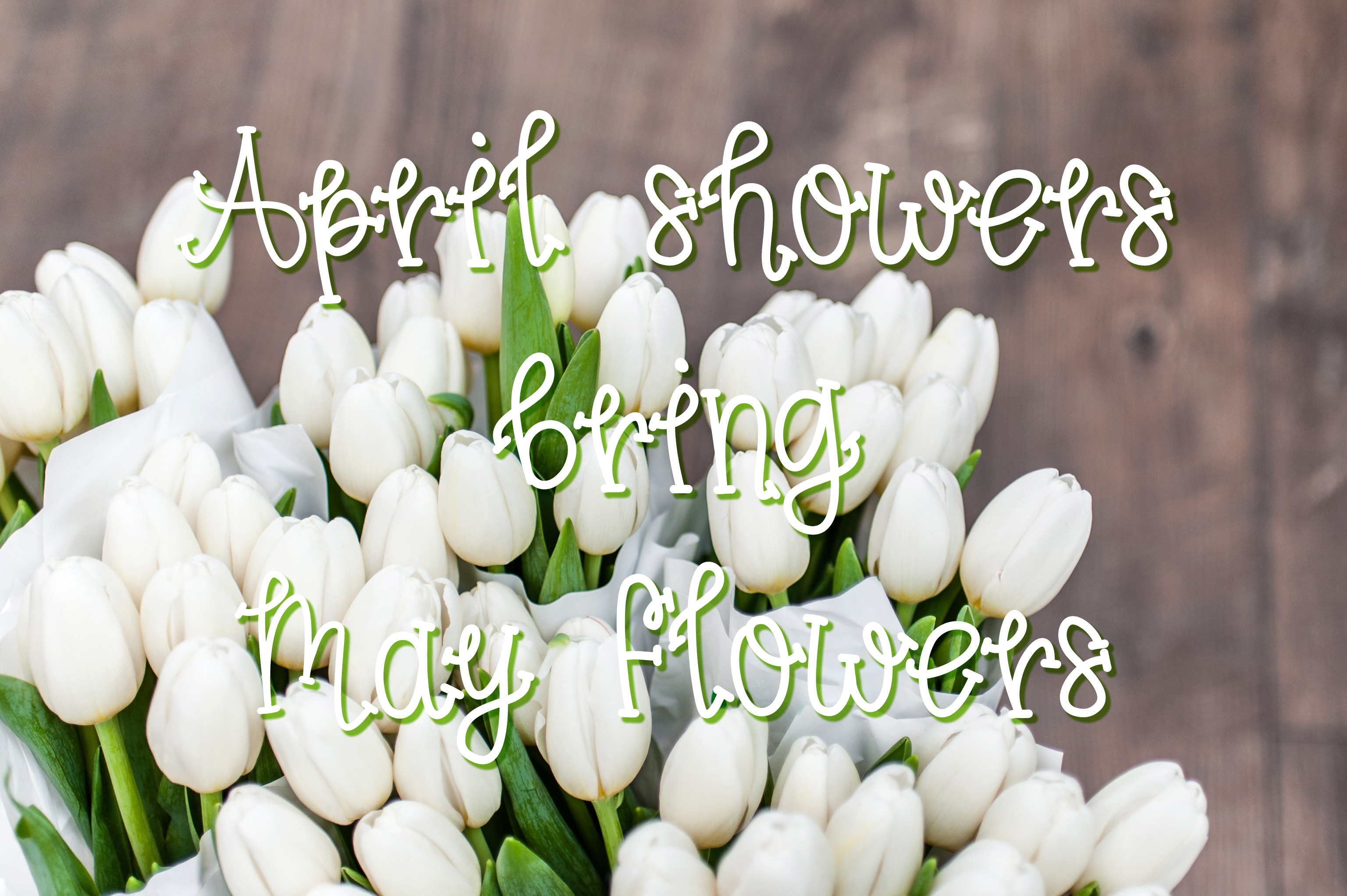 Spring Tulips Font - A Fun Hand Lettered Serif Font example image 2