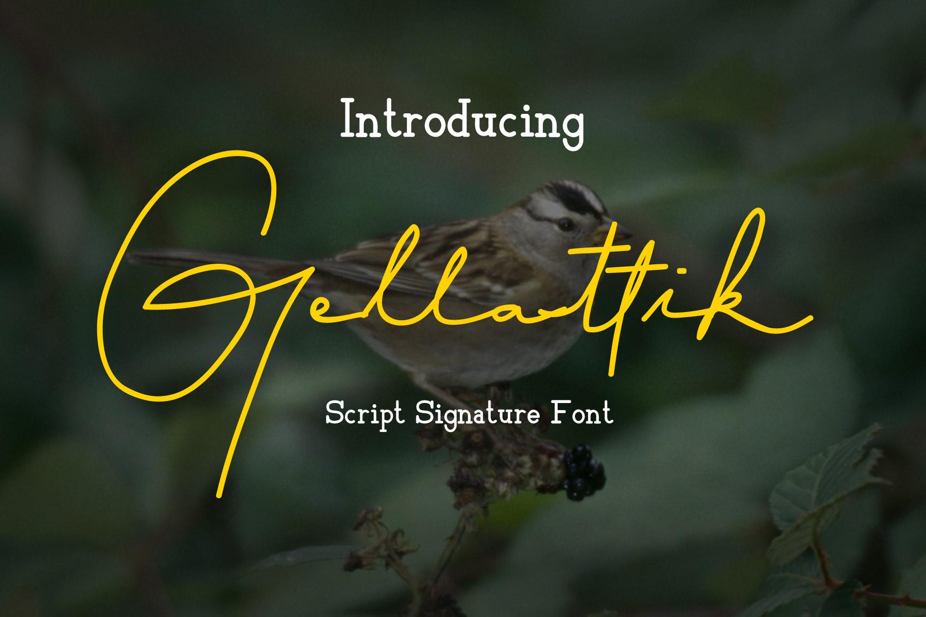 Gellattik - Script Signature Font example image 1