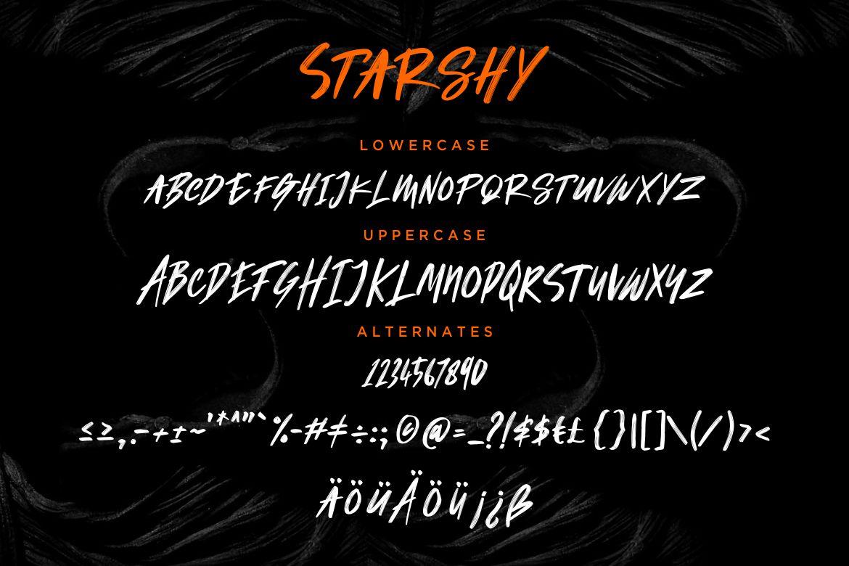Starshy Street Brush example image 7