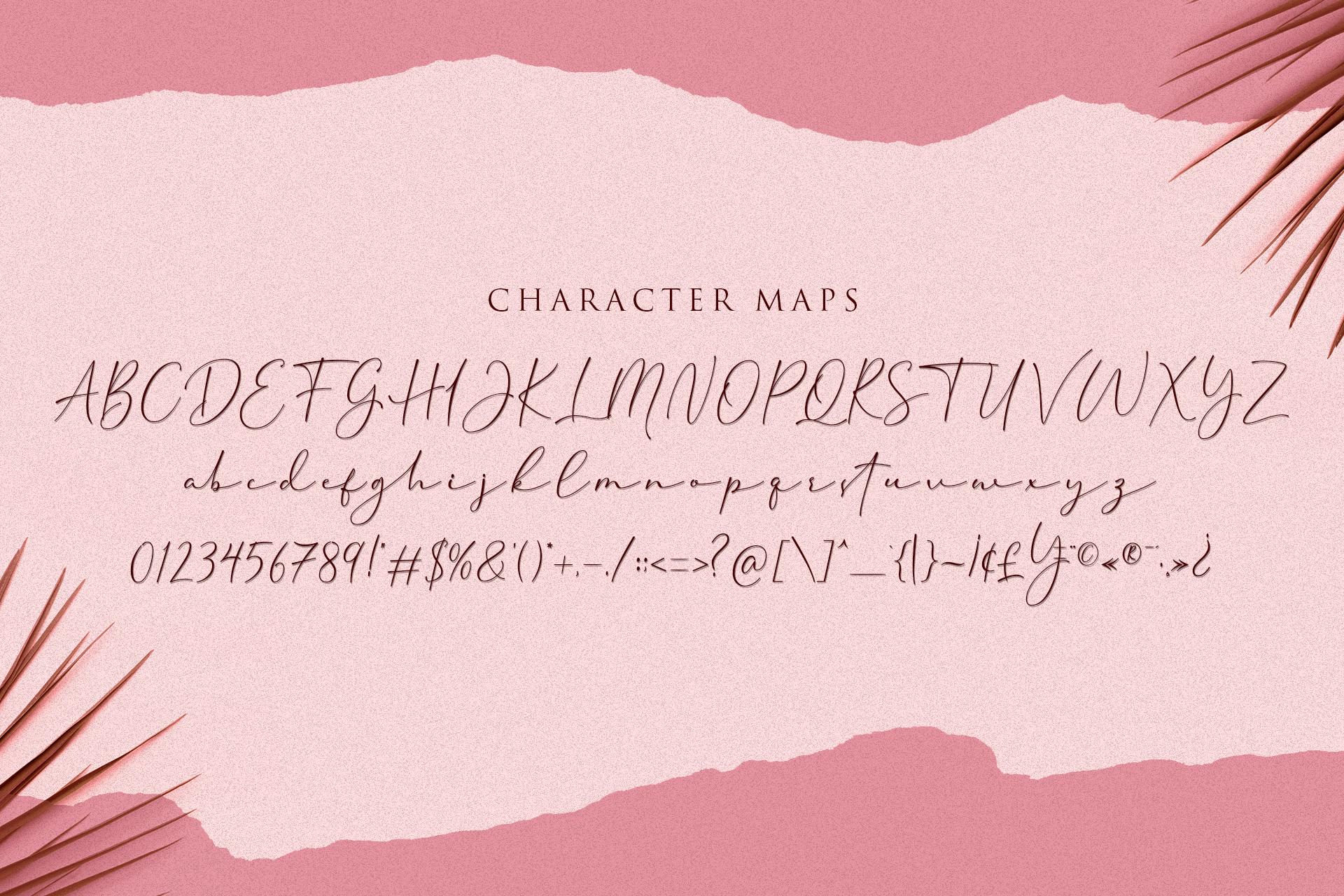 Cherolina-Lovely Elegant Script example image 10