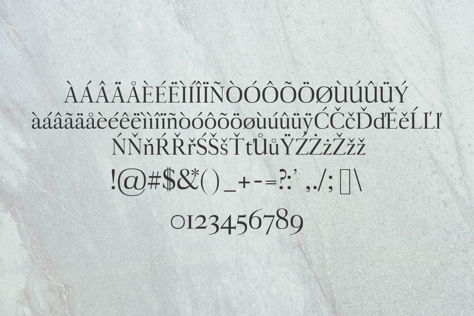 Aludra Serif 12 Font Family Pack example image 3