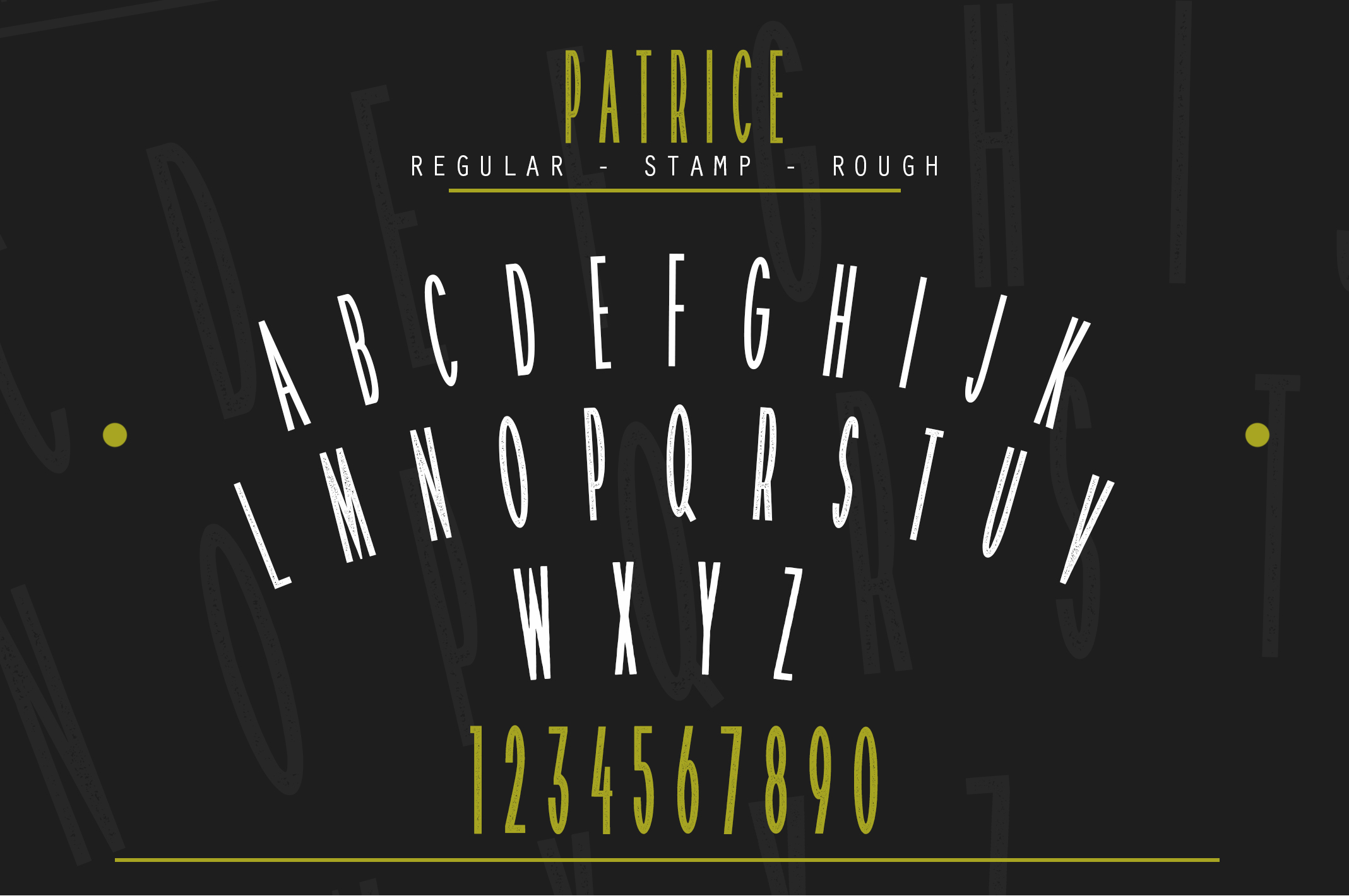 Patrice | Sans Serif Font example image 5