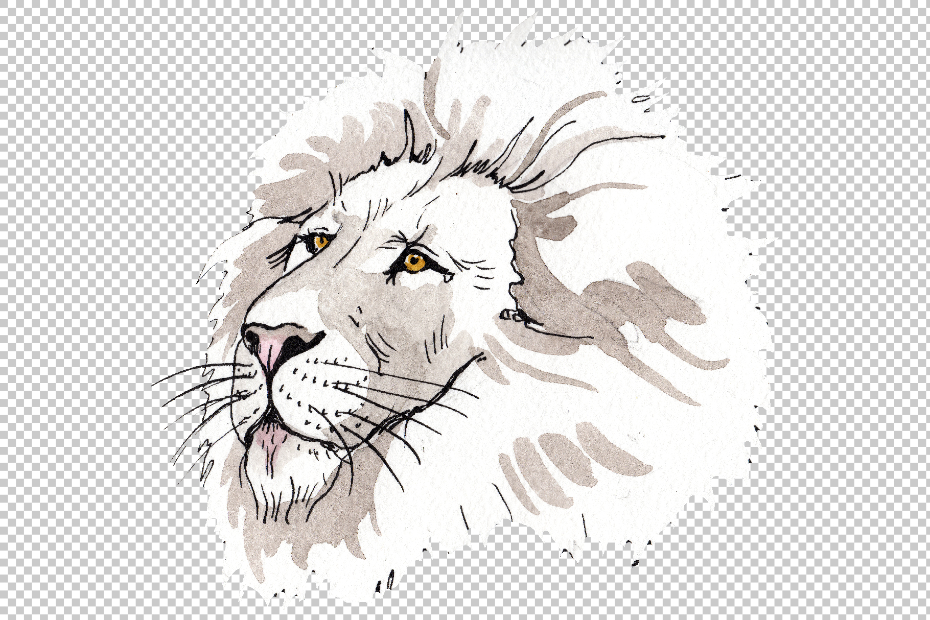 Animal Lion Watercolor png example image 4