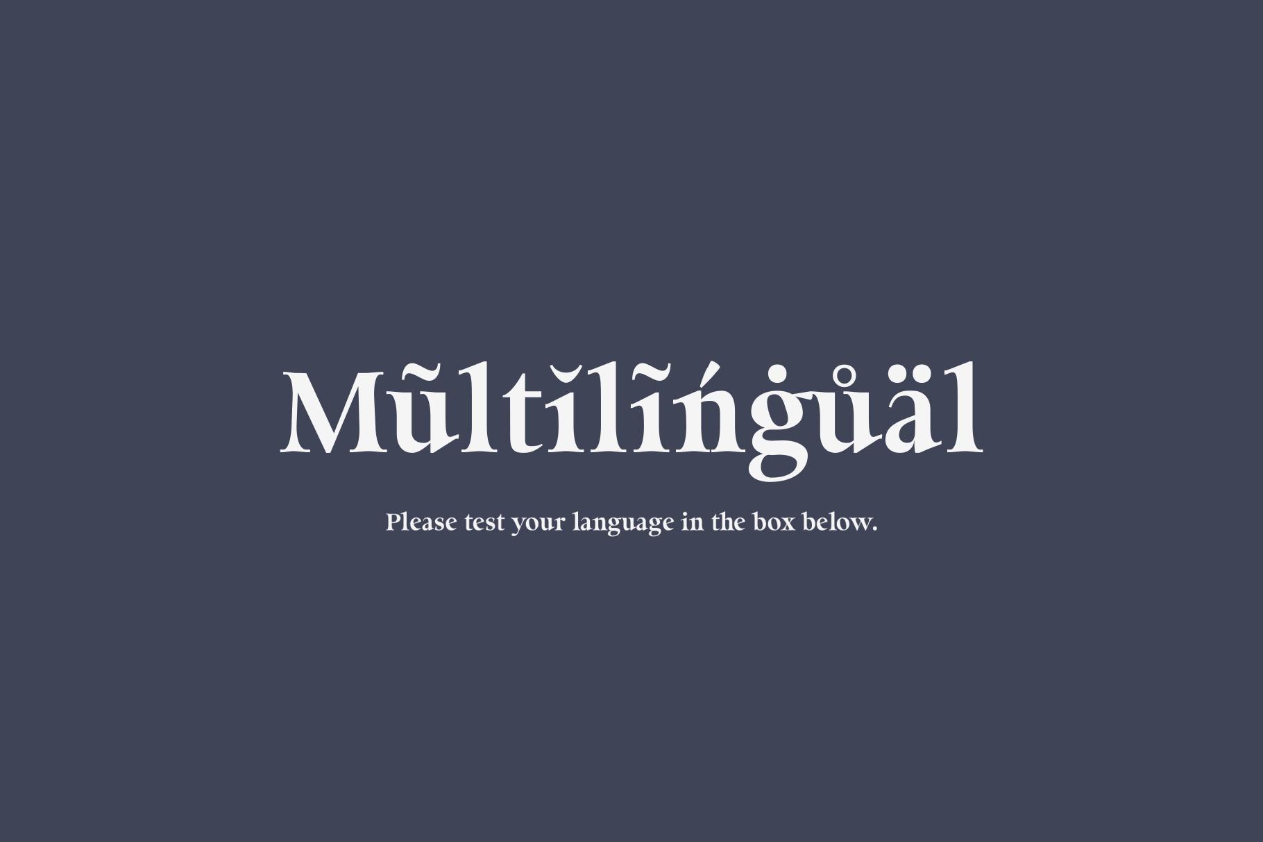 Milky Soft - Elegant serif font example image 7