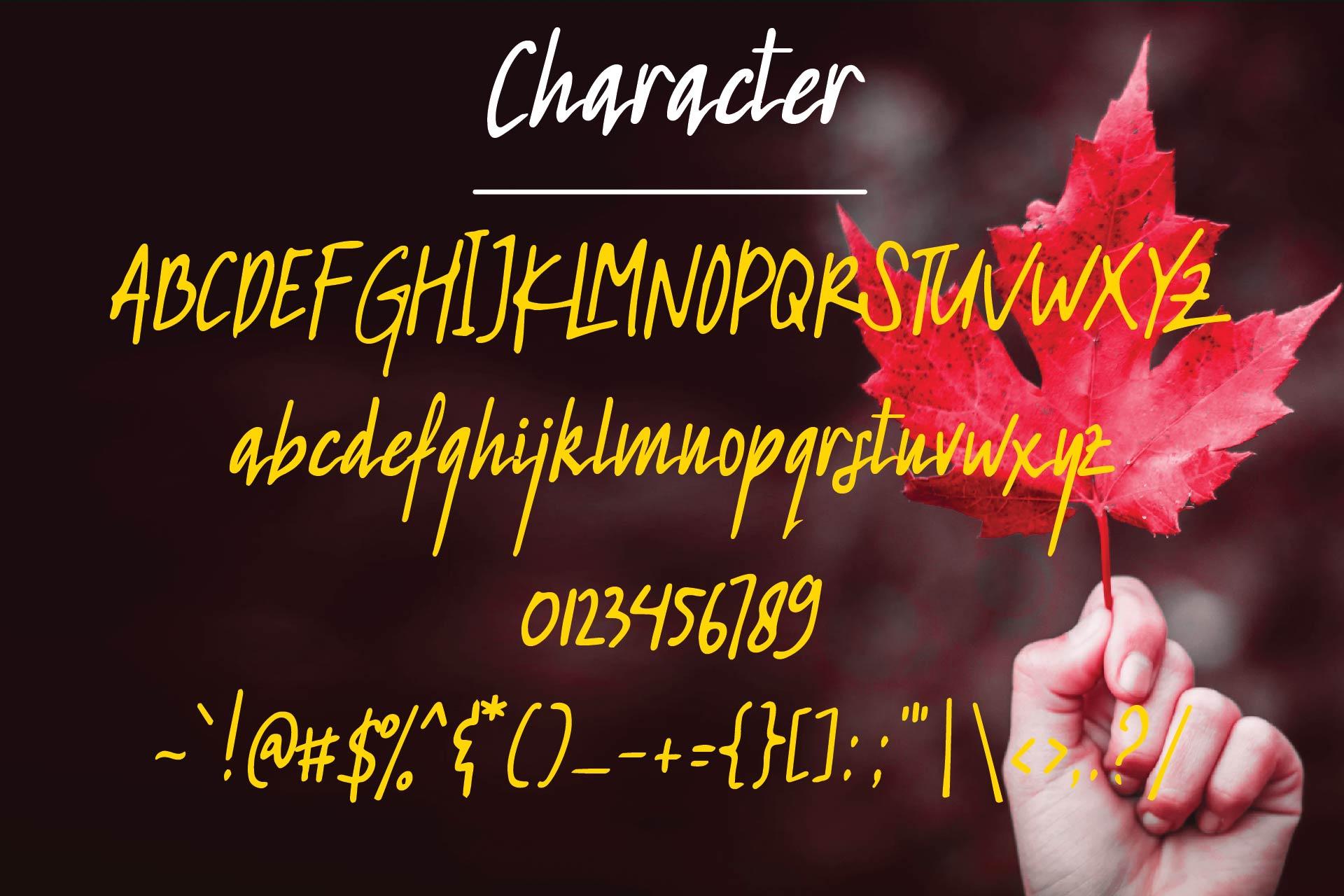 Redleaf Typeface example image 4