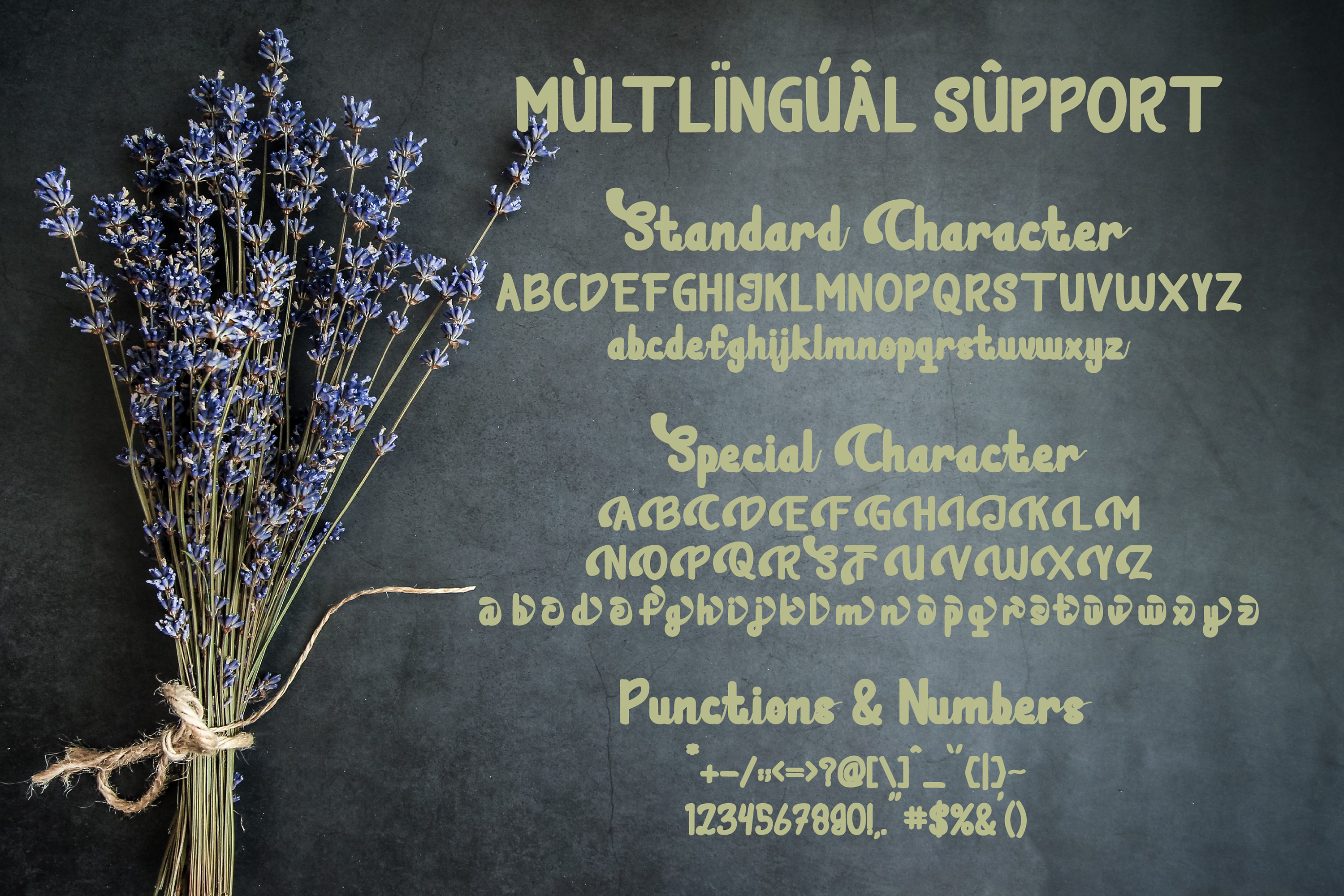 Tesalonica Unique Font Script example image 8