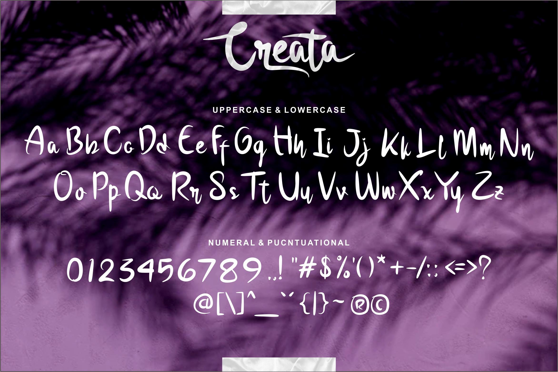 Creata Bold Script example image 5