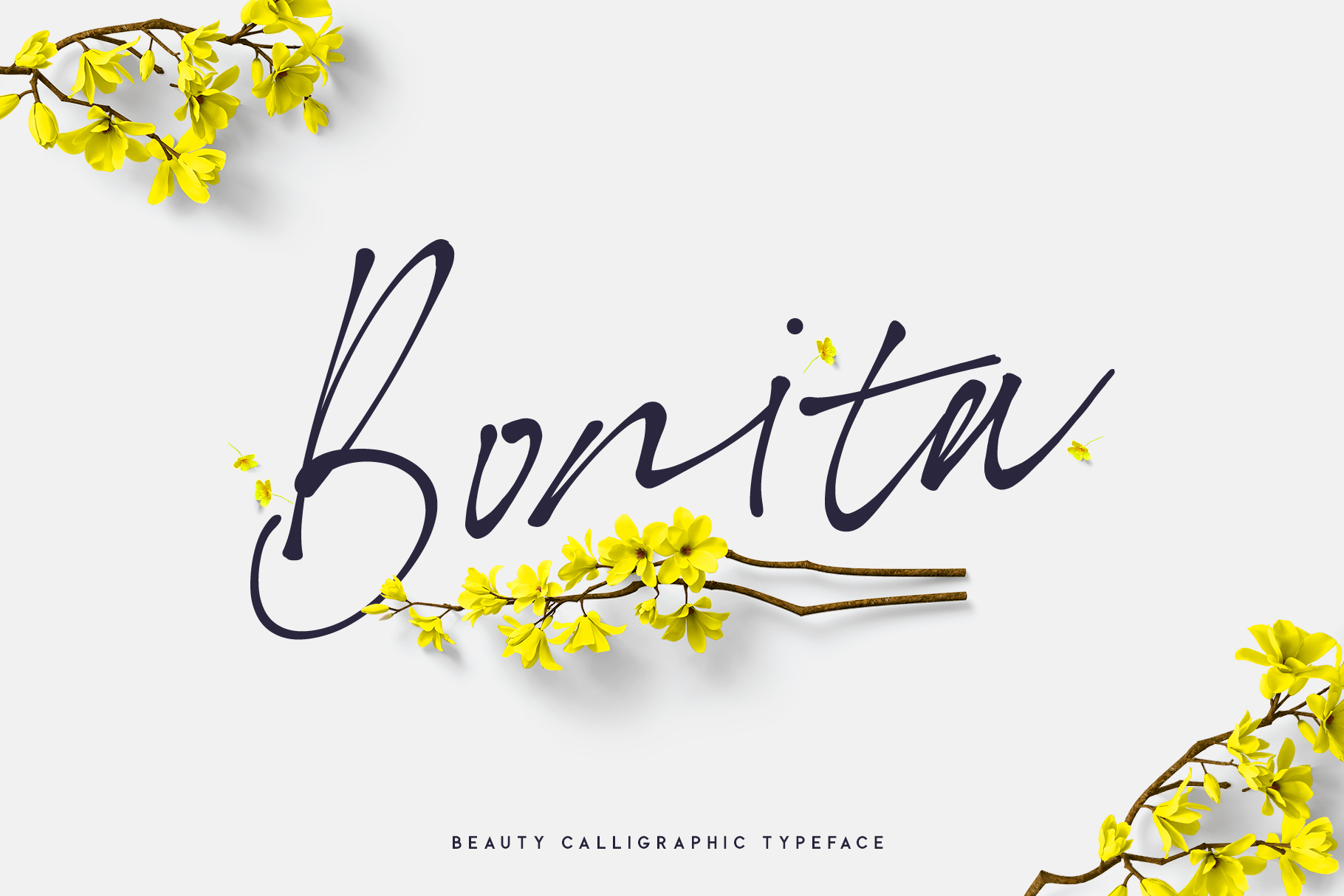 Bonita. Script font family. example image 7
