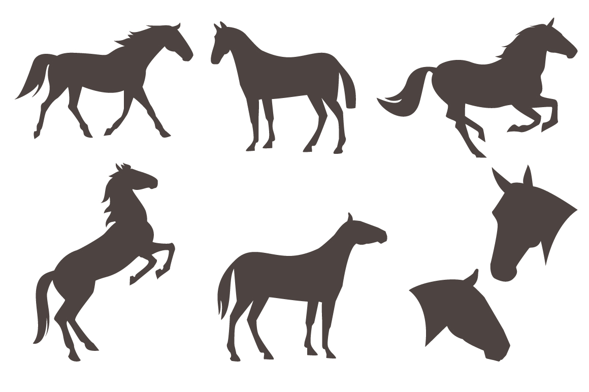 Vector equestrian horse equipment 13 items in 2 color + bonus horse silhouettes and patterns example image 3