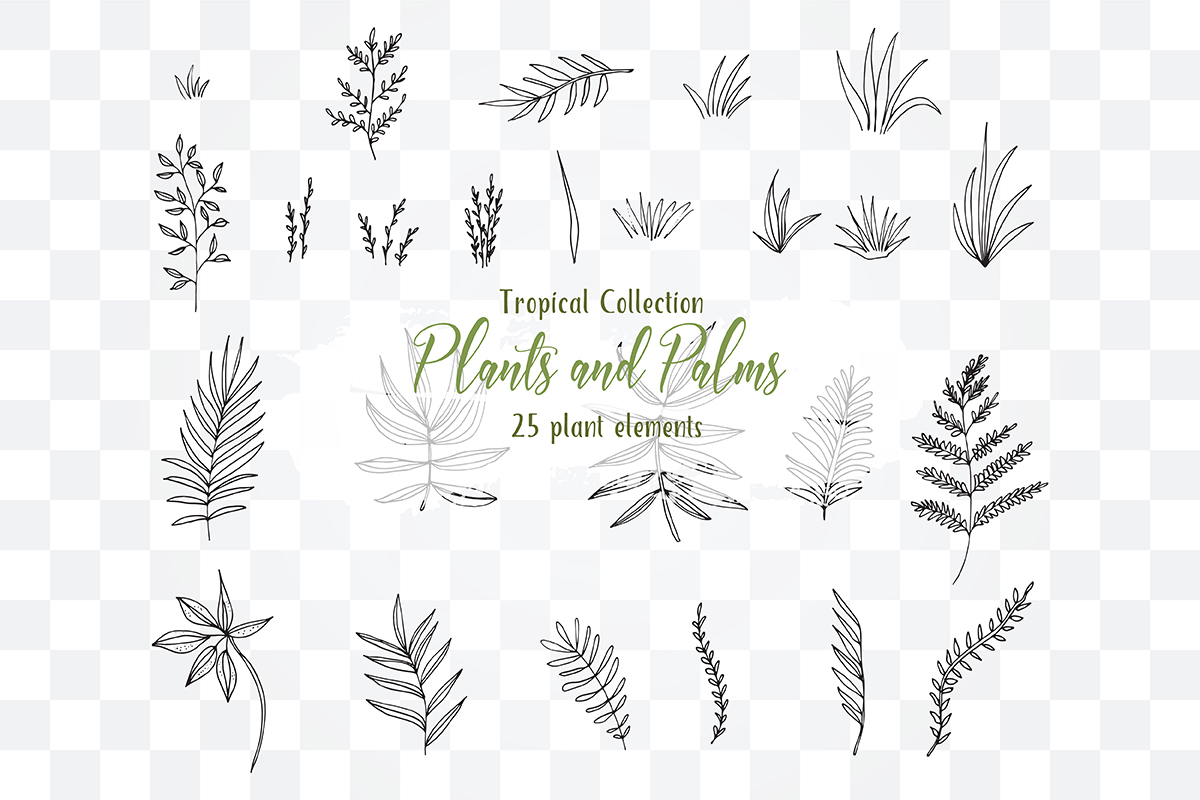 Tropical Exotic collection Tropical collection Summer Plants and PalmsPlants and Palms,tropical invitations, tropical tree example image 2