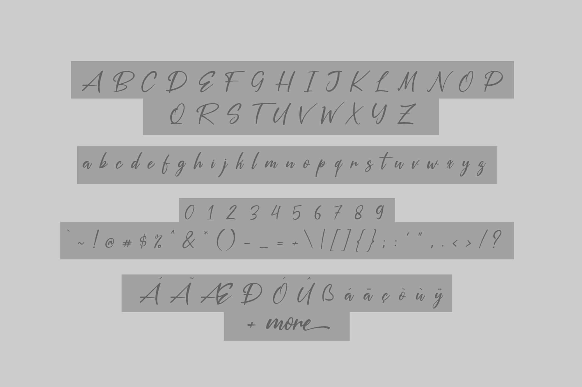 Silver Pen Script example image 6