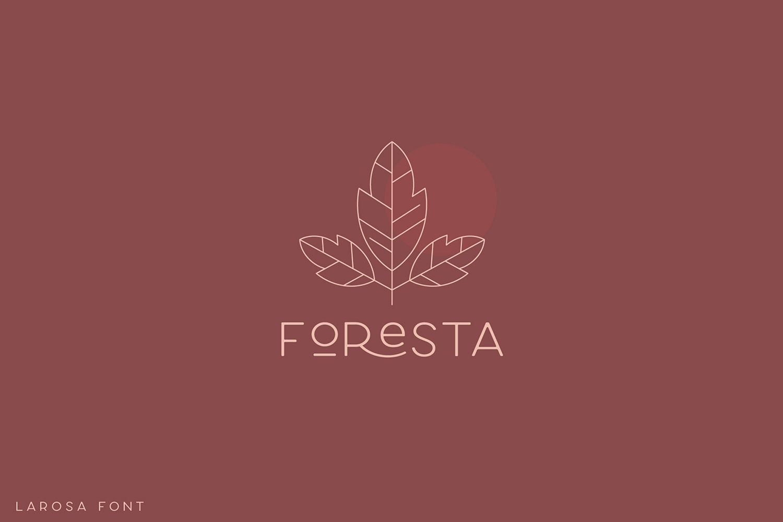 Larosa Sans- 7 Elegant Typeface example image 11