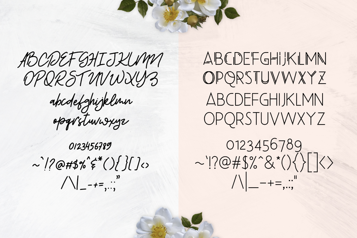 Beauty Salon Modern Font Duo example image 2