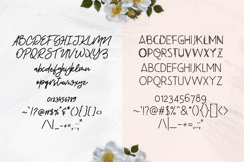 Beauty Salon Modern Font Duo example image 4
