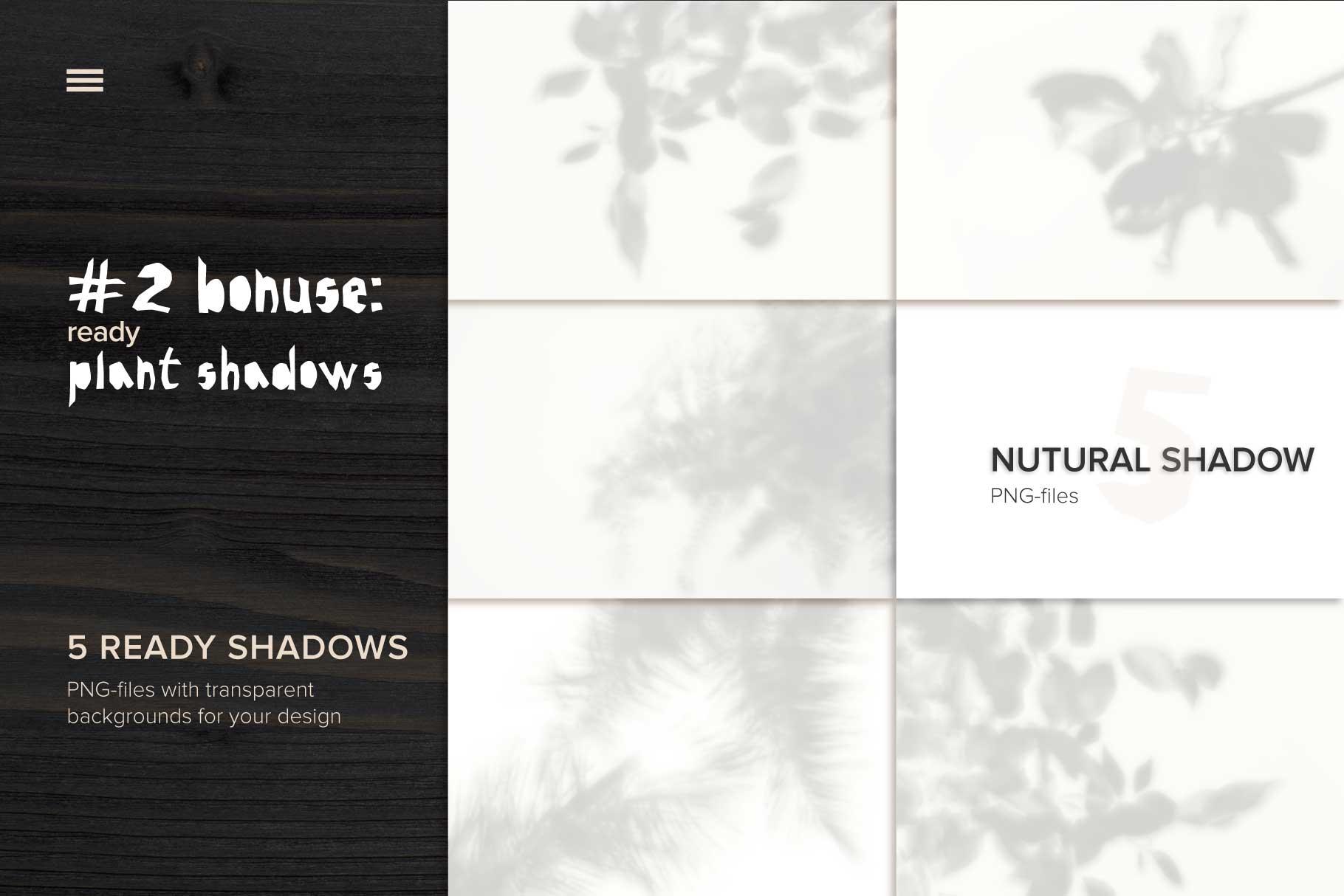 MockUp Natural Plant Shadow creator example image 5