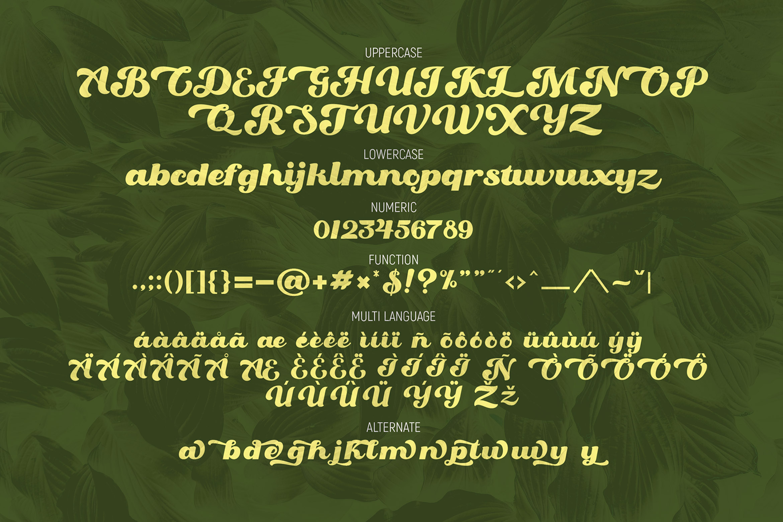 Oaklash - Retro Bold Script Font example image 6