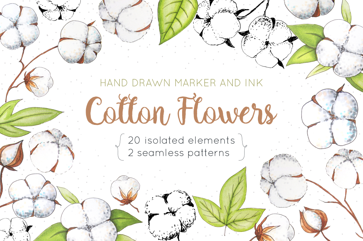 Cotton Flowers Handdrawn Set example image 1