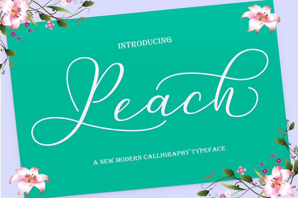 Calligraphy Font Bundles example image 6