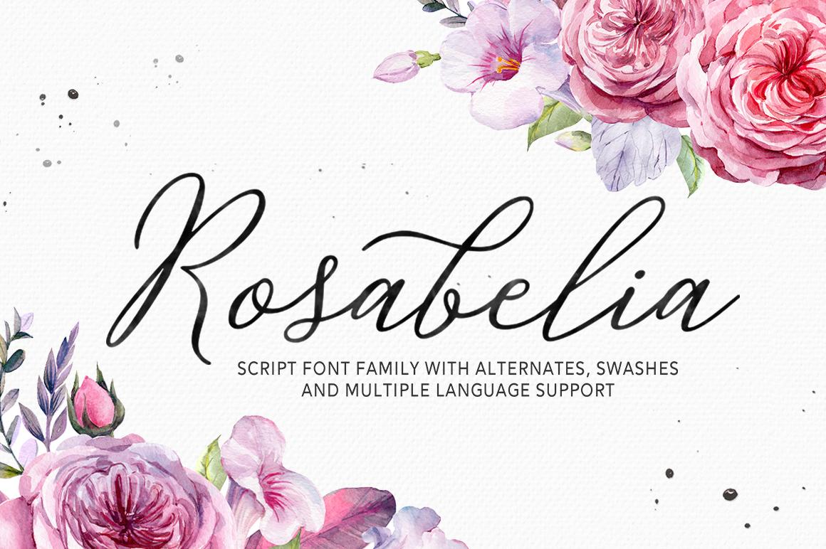 Rosabelia - Script & Sans Serif example image 1