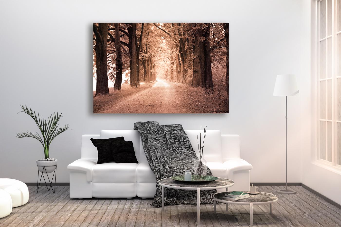 Nature photo, landscape photo, autumn alley photo, example image 2