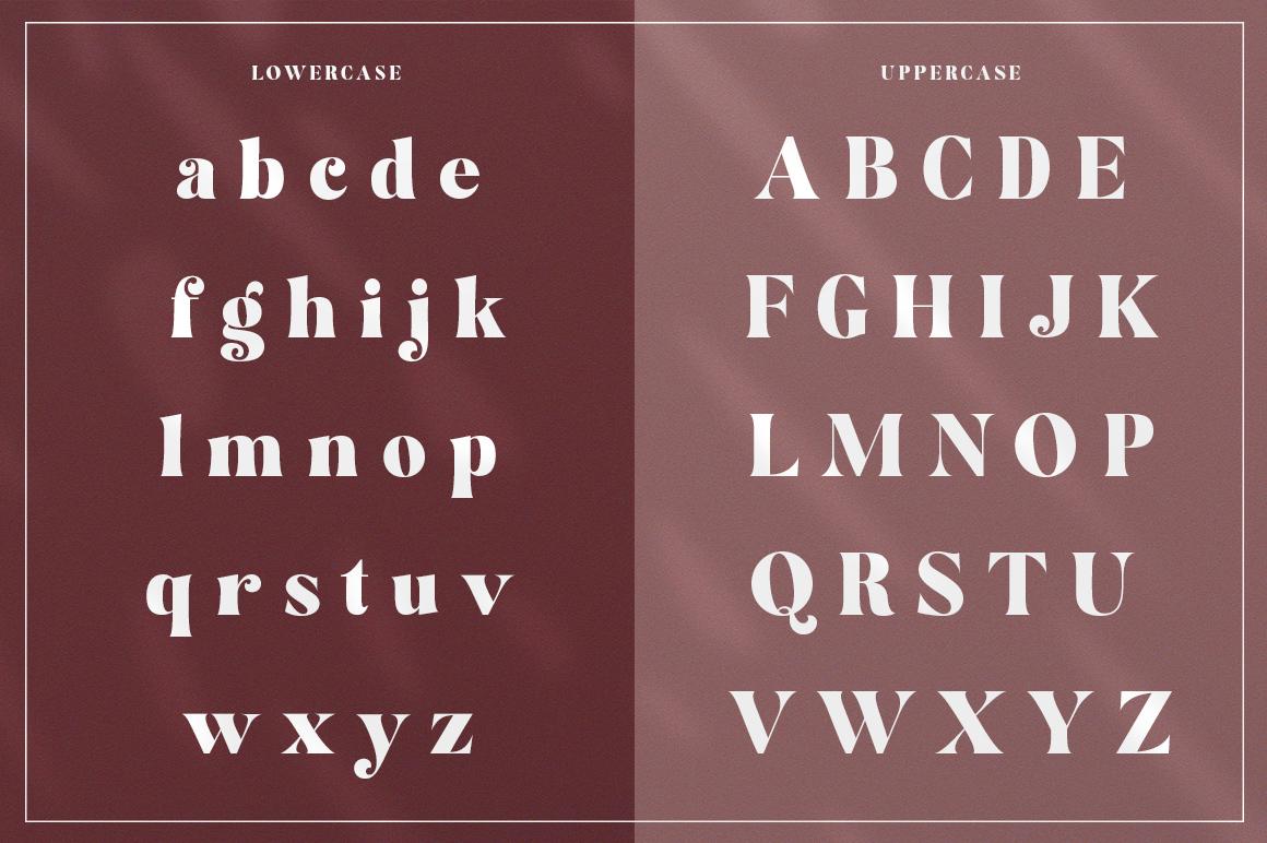 Restgold Serif Font example image 11